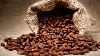 coffee-commodities
