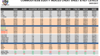 Commodities and Indices Cheat Sheet Jan 24