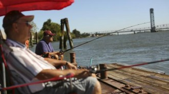 Retirees fish from a public dock on the Sacramento River in the Sacramento San Joaquin River Delta in Rio Vista, California