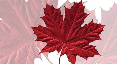 Binary options canada ban
