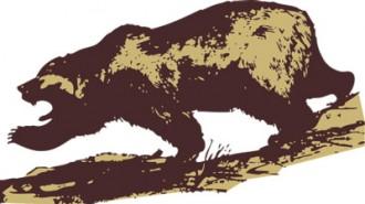 Angry-Bear-460x260